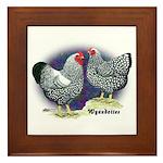 Silver Wyandotte Chickens Framed Tile