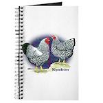 Silver Wyandotte Chickens Journal