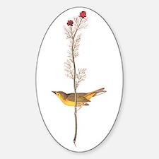 Audubon Selby's Fly Catcher Sticker (oval)