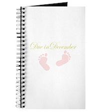 due in december baby feet Journal