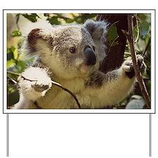 Sweet Baby Koala Yard Sign