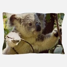 Sweet Baby Koala Pillow Case