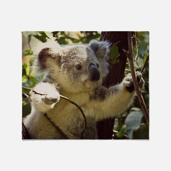 Sweet Baby Koala Throw Blanket