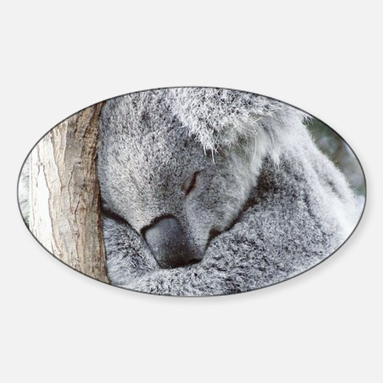 Sleeping Koala baby Decal