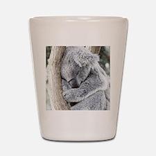 Sleeping Koala baby Shot Glass