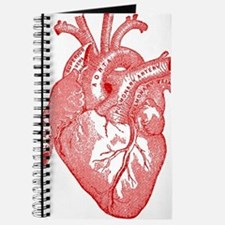Anatomical Heart - Red Journal