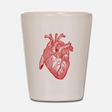 Anatomical Heart - Red Shot Glass