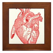 Anatomical Heart - Red Framed Tile