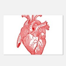 Anatomical Heart - Red Postcards (Package of 8)