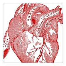 "Anatomical Heart - Red Square Car Magnet 3"" x 3"""