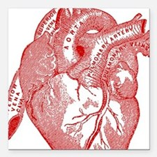 """Anatomical Heart - Red Square Car Magnet 3"""" x 3"""""""