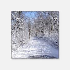 Snow Trail Scenery Sticker