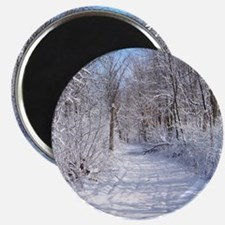 Snow Trail Scenery Magnets