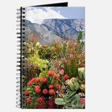 South African flower display in bloom Journal