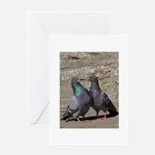 Pigeons!! Greeting Cards