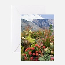South African flower display in blo Greeting Cards