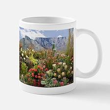 South African flower display in bloom Mugs