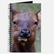 Funny Elk Journal