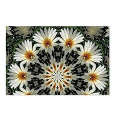 Daisy Wheel Postcards (Package of 8)