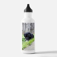 Toy Water Bottle