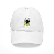 Chewie Baseball Cap