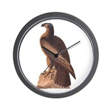 Juvenile Bald Eagle Wall Clock