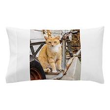 Yard Buddy Pillow Case
