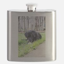 Toy Flask