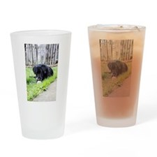 Toy Drinking Glass