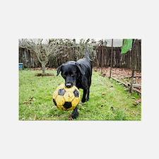 Soccer Magnets