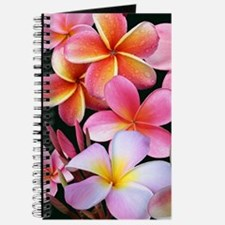 Pink Plumerias Journal