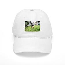 Fetch Baseball Cap