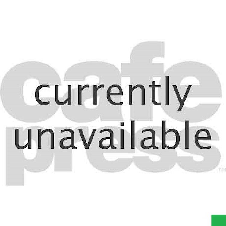 cute golden reriever with a santa Teddy Bear