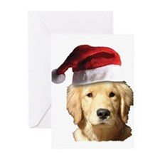 cute golden reriever wit Greeting Cards (Pk of 20)