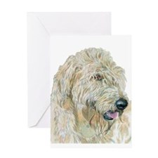 Cream Labradoodle Greeting Cards