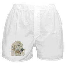 Cream Labradoodle Boxer Shorts