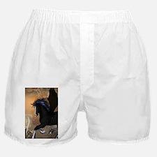 Bautiful dark unicorn Boxer Shorts