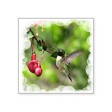 "Black-chinned Hummingbird Square Sticker 3"" x 3"""