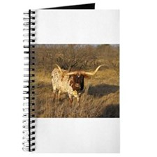 Texas Longhorn on the ranch Journal