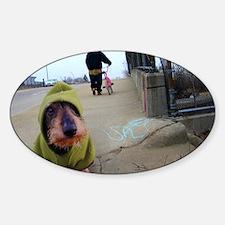 Dogz In the Hood Sticker (Oval)
