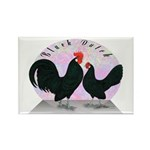 Black Dutch Chickens Rectangle Magnet (10 pack)