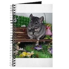 ebony chinchilla Journal
