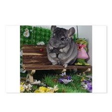 ebony chinchilla Postcards (Package of 8)