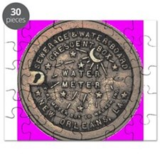 New Orleans Water Meter Puzzle