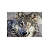 Wolf Bedroom Décor