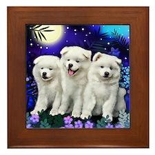 American Eskimo Dogs Moon Framed Tile
