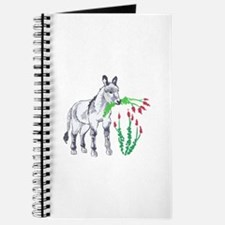 BURRO EATING OCOTILLO Journal