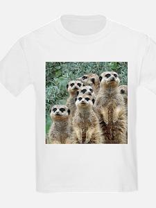 Meerkat 002Q T-Shirt