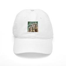 Meerkat 002Q Cap