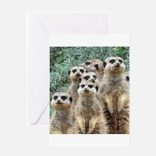 Meerkat 002Q Greeting Cards
